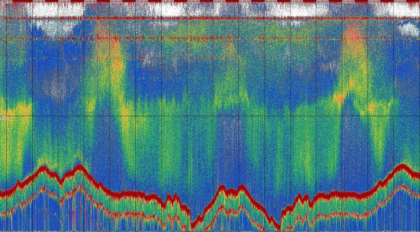 an echogram showing lines representing acoustic data